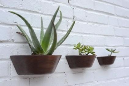 Kaktus-Pflanzgefäß zur Wandmontage