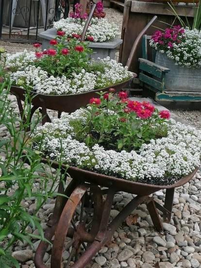 Wheelbarrow-with-flowers.v1-12573