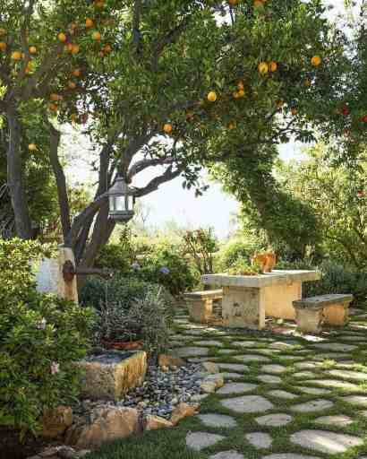 Lemon-trees