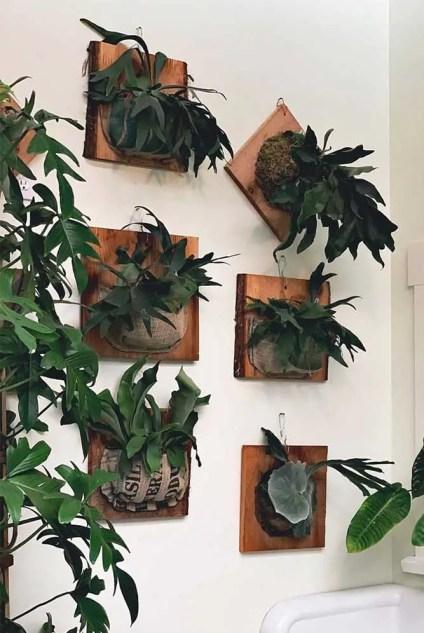 Wand-Pflanzgefäße-Holz-montiert-Luft-hängend
