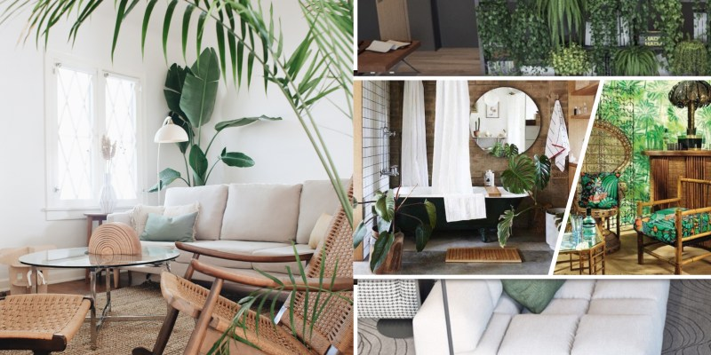Effective ways to create a fresh home oasis