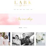Lark Photography