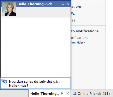 Example of Facebook's in-site chat system. Via Flickr Creative Commons. http://www.flickr.com/photos/pollas/2478153160/