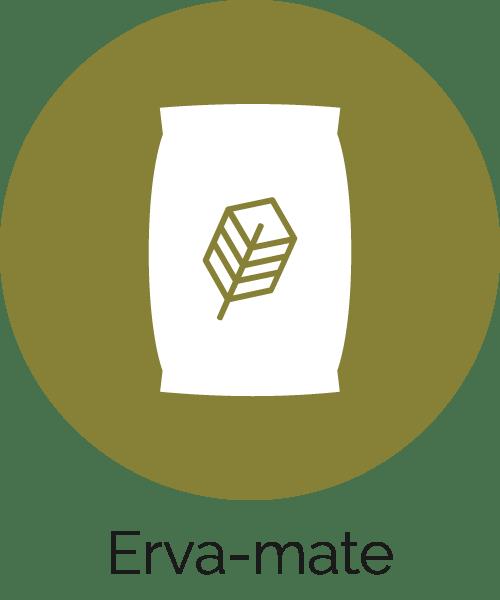 Erva-mate para Chimarrão