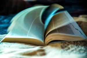 Las matemáticas calculan el número de libros que puedes leer en un año