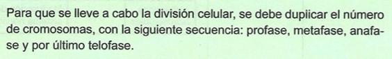 División celular