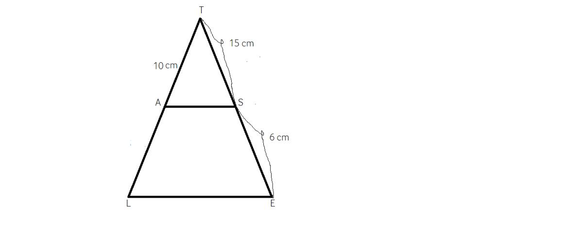 probleme rezolvate cu Teorema lui Thales