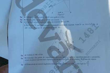 subiecte evaluarea nationala 2015