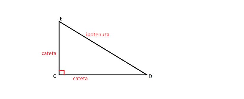 triunghi dreptunghic