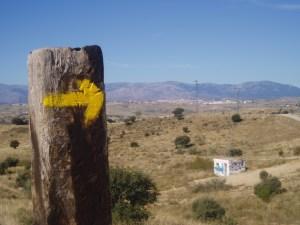 señal Camino Santiago