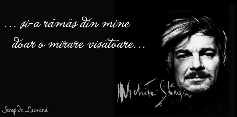 nichita-stanescu-mirare-visatoare