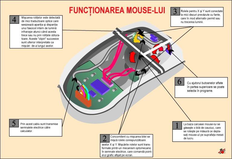 Functionarea mouse-lui
