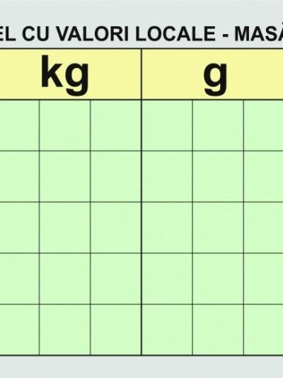 Tabel demonstrativ de valori - MASA