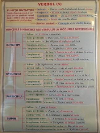 Verbul (4). Functii sintactice / Conversiunea (Schimbarea valorii gramaticale)
