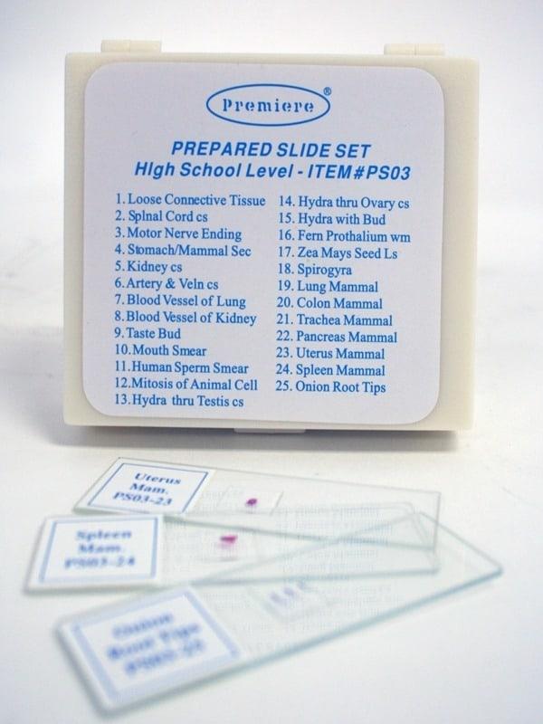 Set de preparate II. LICEU 3