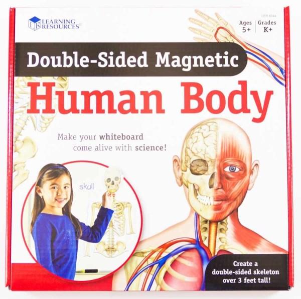 Corpul uman - set magnetic 9