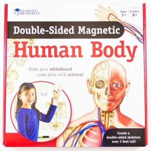 Corpul uman - set magnetic 15