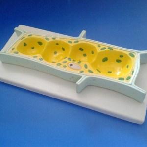 Celula vegetala 7