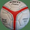 Minge handbal France 2