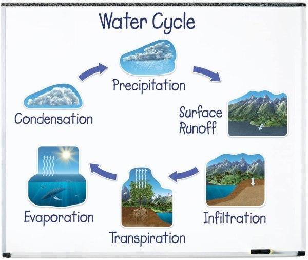 Circuitul apei in natura Magnetic 3