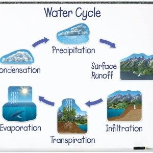 Circuitul apei in natura Magnetic 4