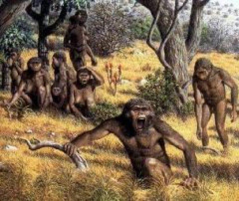 Jenis manusia purba Meganthropus Palaeojavanicus