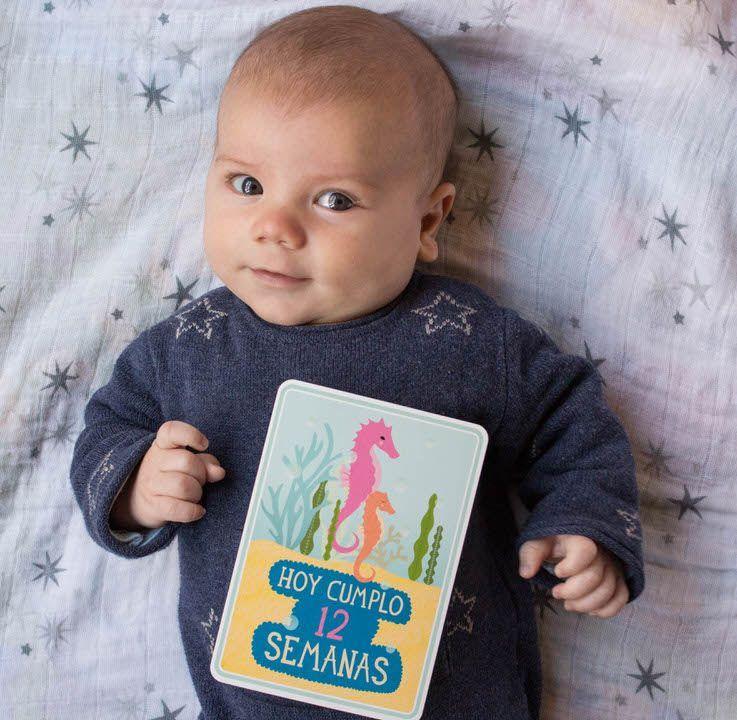 desarrollo-bebe-meses