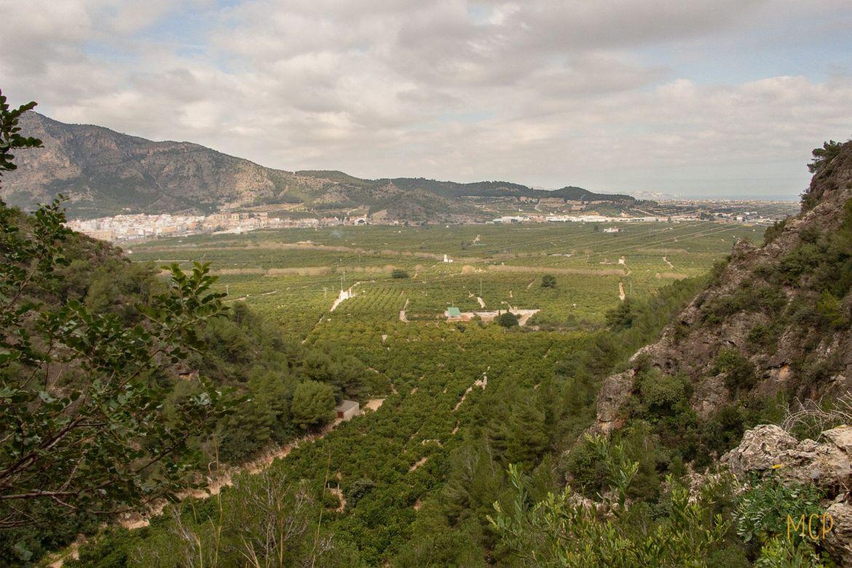 valle-bolomor