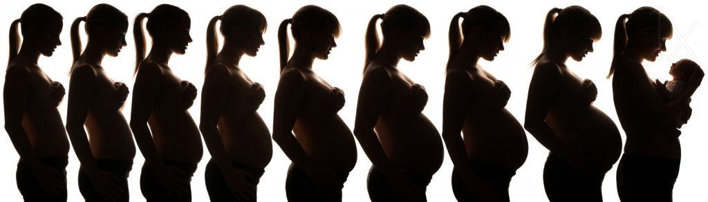 Las etapas del embarazo mes a mes