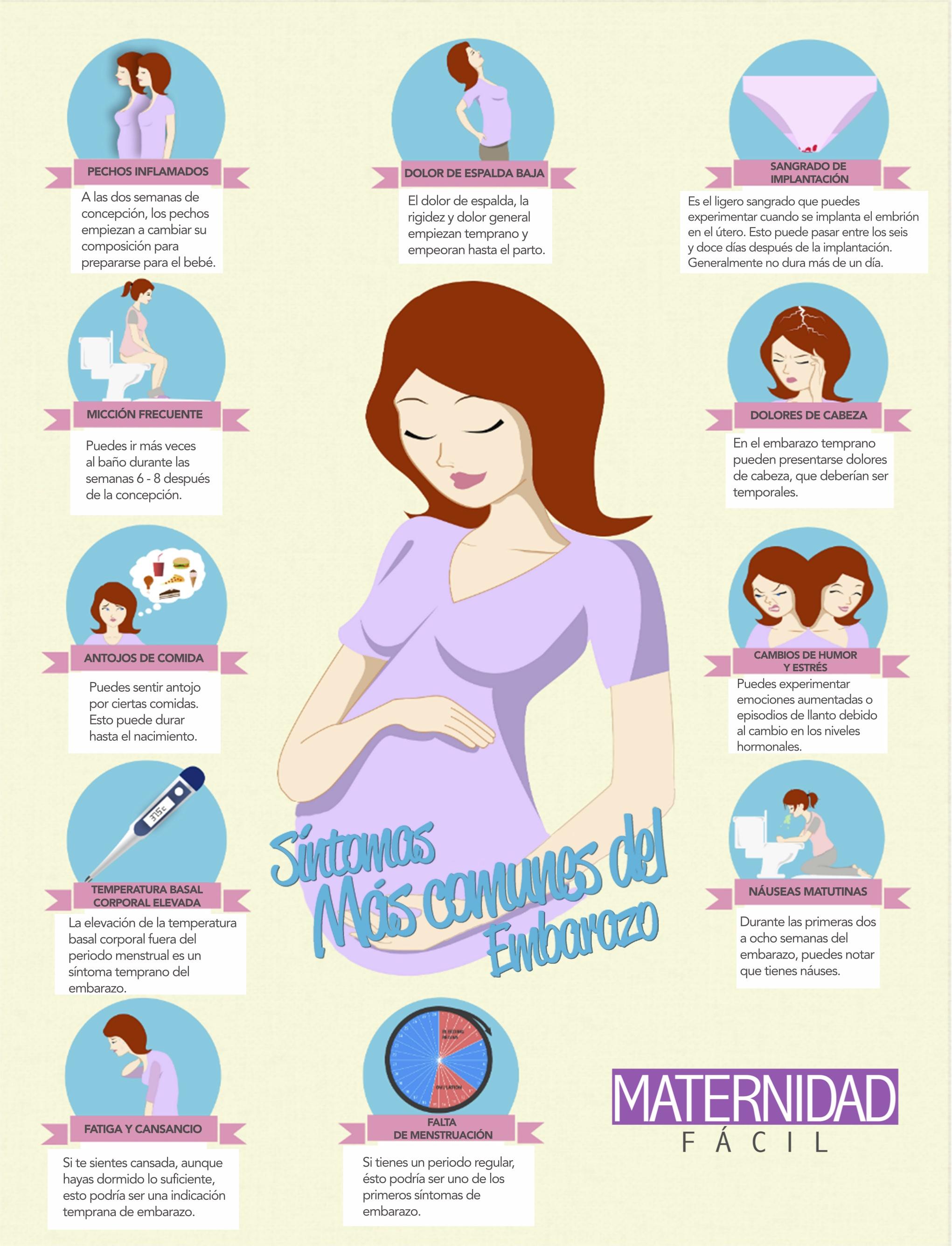 4 semanas de embarazo los primeros s ntomas for Como se cocinan los percebes