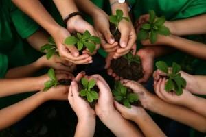 dia mundial del medio ambiente
