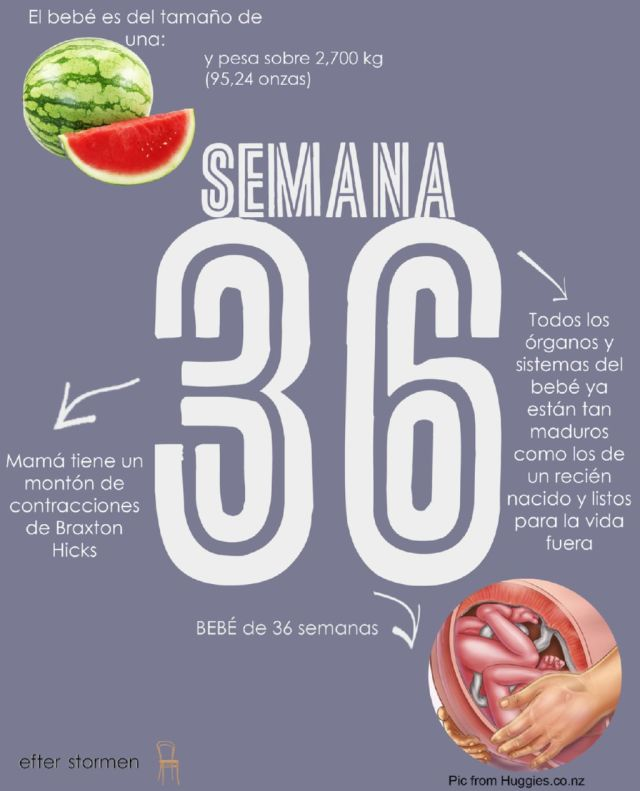 cuerpo-embarazo36