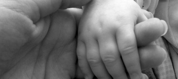 crianza natural crianza con apegonatural