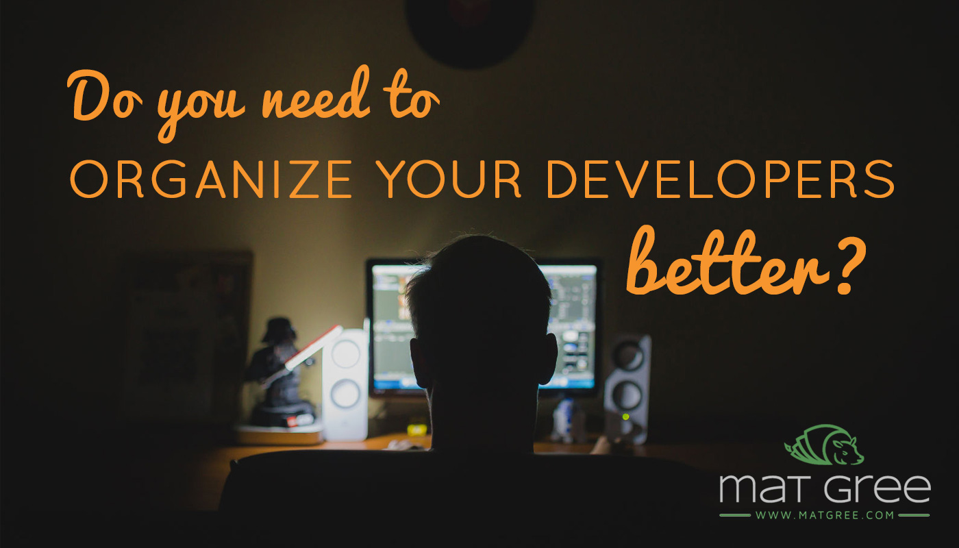 Do you need to organize your developers better?