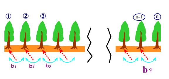 09 20210430植木算3
