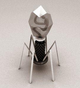 3D Model of T4 Bacteriophage