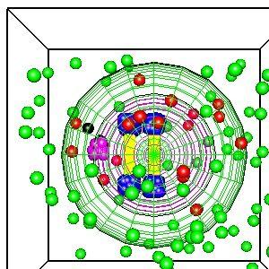 Smoldyn Cell Simulation