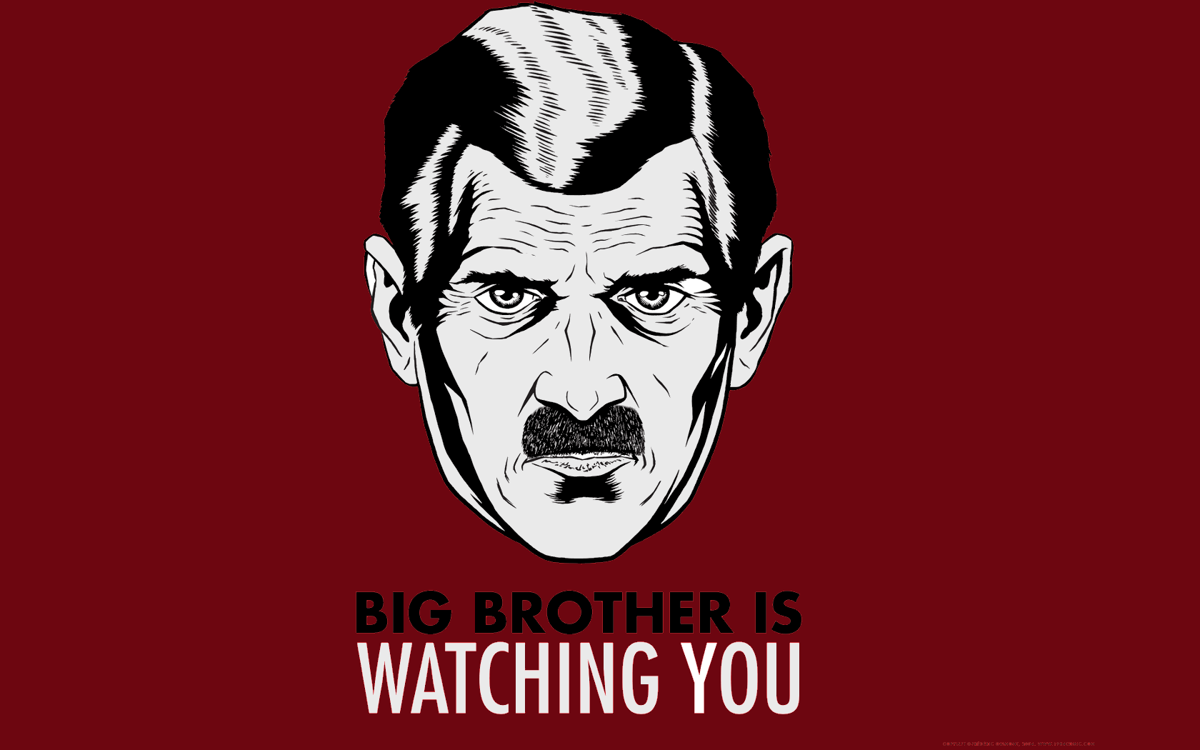big-brother-is-watching-you-94815124855
