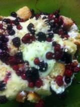 Babette's Beeren-Trifle - Schichten