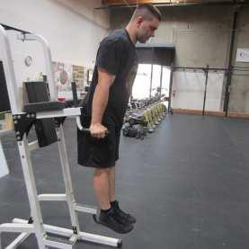 Bodyweight Dip Exercise 3