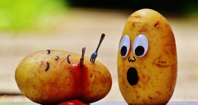 funny potato head