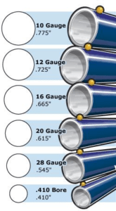Figure 1: Relative Bore Diameters of Shotgun Gauges.