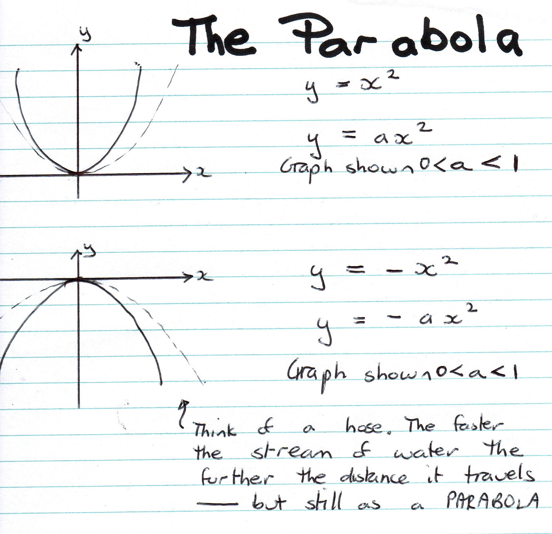 Worksheet Parabola Worksheets Grass Fedjp Worksheet