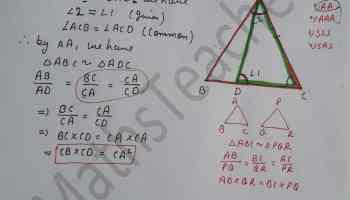 class 10 chapter-6 ex 6.3 Q-13