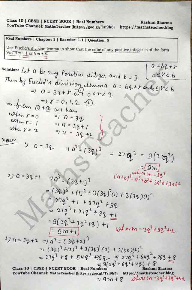 Class 10 Maths Real Numbers Exercise  1.1 Question 5