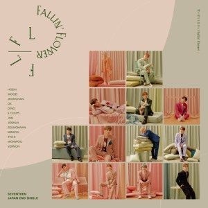 Download SEVENTEEN - Fallin` Flower Mp3