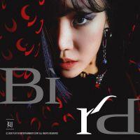 Kim Nam Joo - Bird