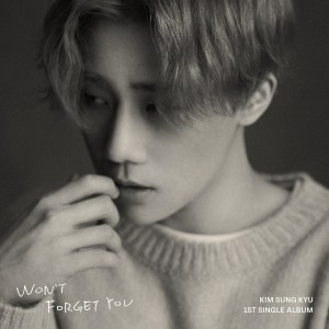 Download Kim Sung Kyu - My day Mp3