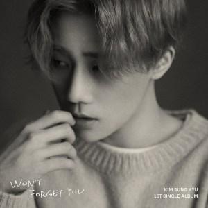 Download Kim Sung Kyu - HUSH Mp3