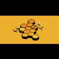 LAY - Honey